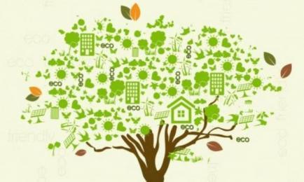 Darmowe audyty energetyczne dla przedsiębiorstw