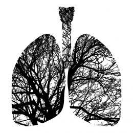 Dowiedz się jak aktywować przyłącze gazowe i zrób bezpłatne badanie płuc!