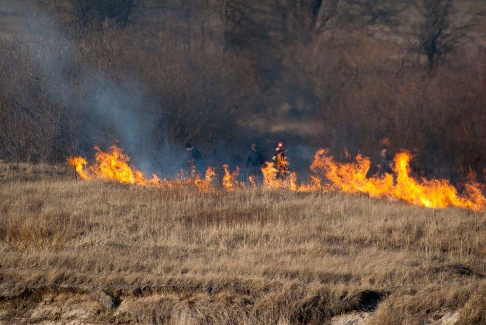 W 2018 r. żorscy strażacy ugasili 47 pożarów traw. Ile będzie w tym roku?